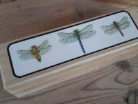Dragonfly pencil box