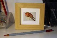 Mini robin