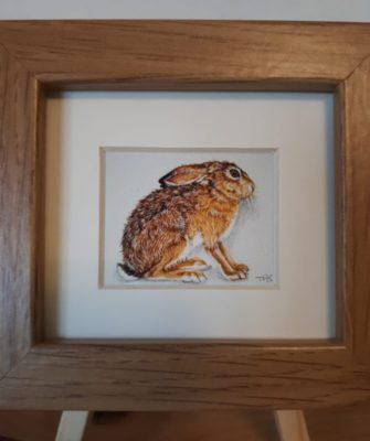 mini print hare